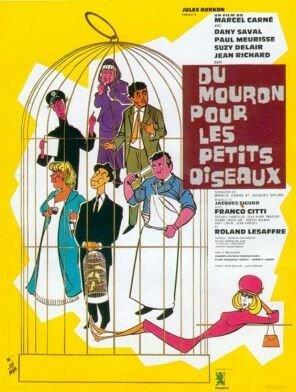 du_mouron_pour_oiseaux