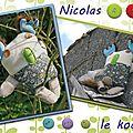 Nicolas le koala