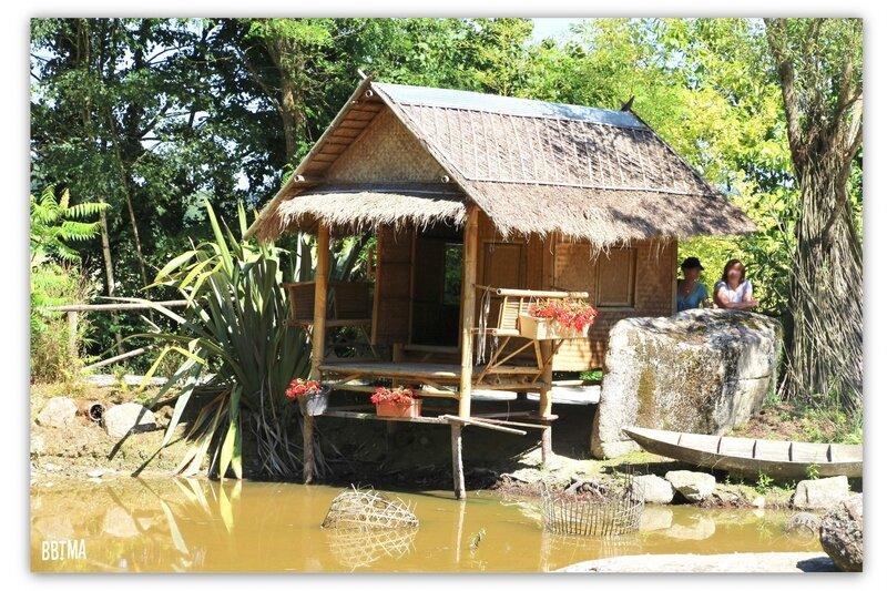 15-tropical-parc-sortie-famille-enfant-kids-bretagne-morbihan-saint-jacut-les-pins-faune-flore-tropicale-animalier-animaux-jardin-spectacle-cactus-bbtma-blog-parents-maman