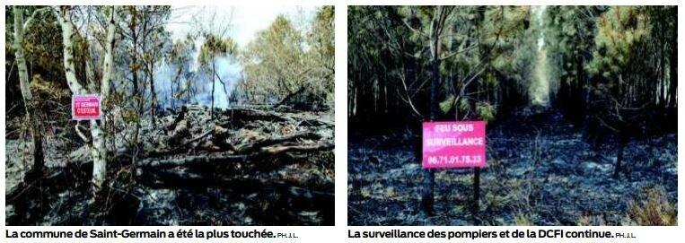 La forêt toujours placée sous haute surveillance