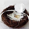 nid d'oiseau porte alliance avec fleur blanche