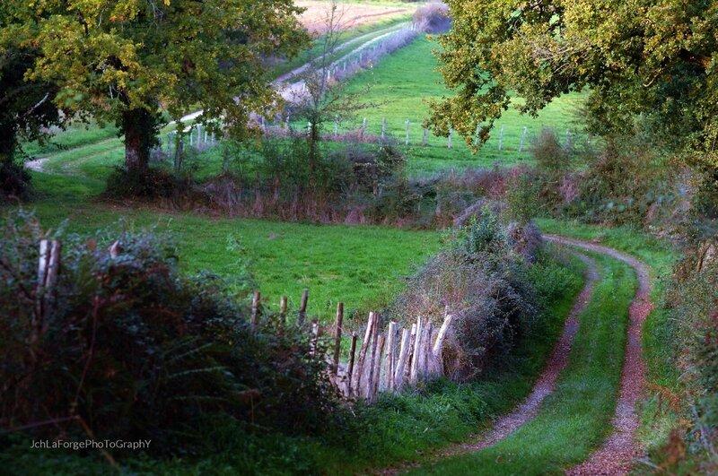 Chemins Saint Adjutory (10)