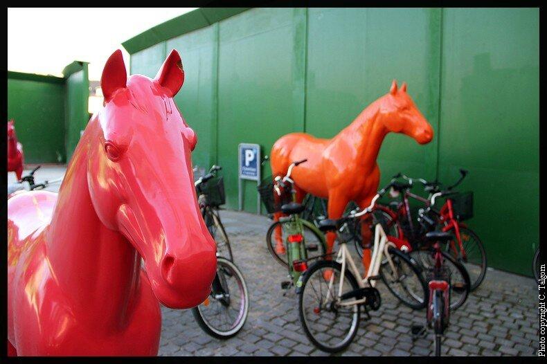 Copenhague : Kongens Nytorv