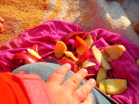 applesnack2