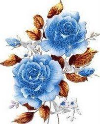 Rosa blu[1]