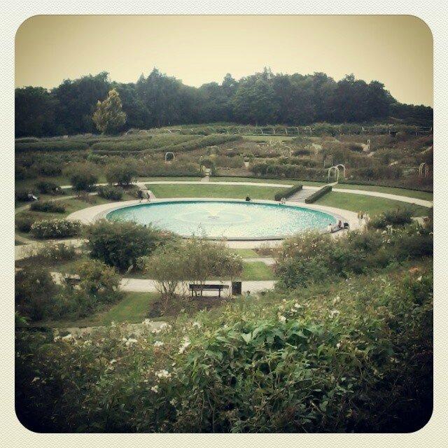 fontaine-colline-oiseaux-caen-eau-roses-normandie