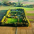 Le hêtre: première grande victime du changement climatique en normandie...