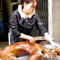 La chine protège les animaux... mouais...