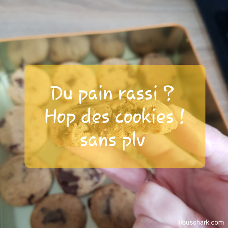 Pain rassi cookie sans plv