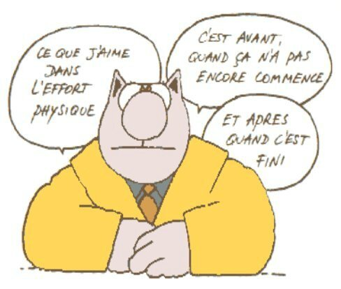 humour-lechat-sportif_forfait__medhky