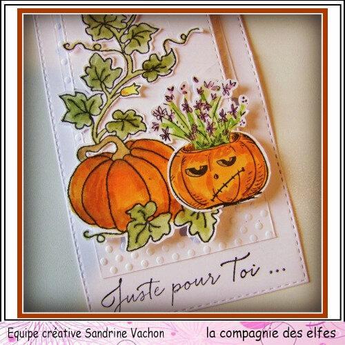 Tag automne 1er oct DT LCDE (3)