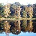 Argoat3 l'étang au petit matin