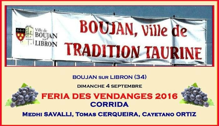BOUJAN VENDANGES 2016