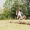 équitation de pleine nature - rallye équestre (58)