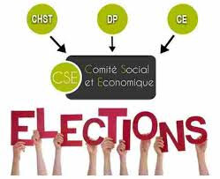 elections prof