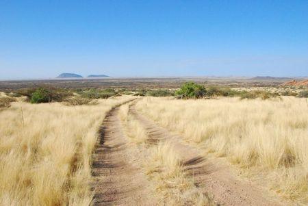 Namibie (256)