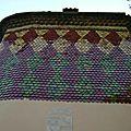 Les façades vernissées de la provence verte