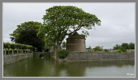 Fontenay-sur-Mer (8)