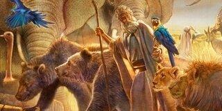 Noah-ni,-Arche Noé