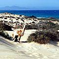 122 - Plages du Nord-Est de Fuerteventura
