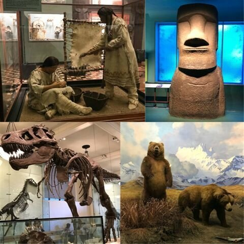 American Museum of Natural History ©Kid Friendly