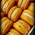 Macarons citron #2