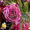 De jolies fleurs pour le dire