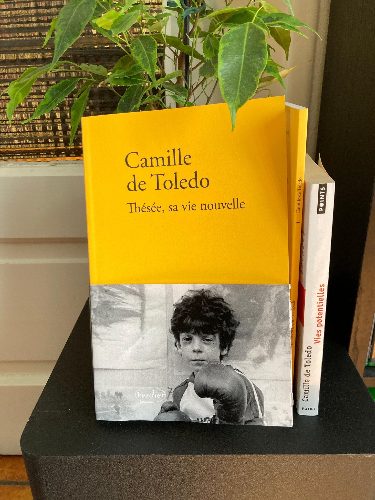 « Thésée, sa vie nouvelle » de Camille de Toledo