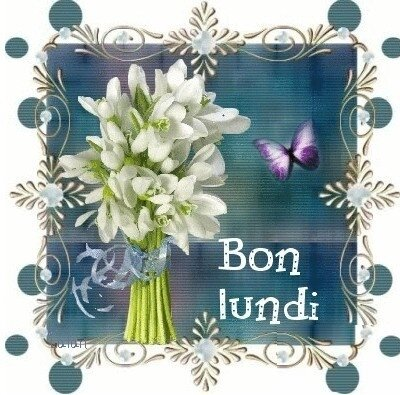 1_b_L_bouquet_blc_BPat