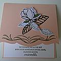 Première carte de la collection magnolias