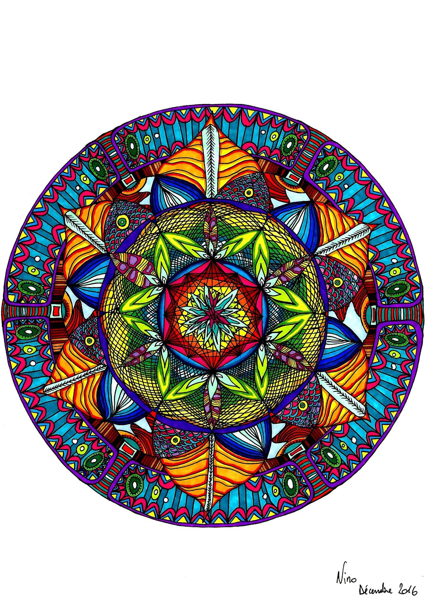Fleur cosmique d'Automne n°4