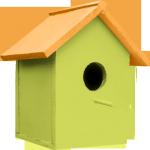 cabane-oiseau-vert-orange