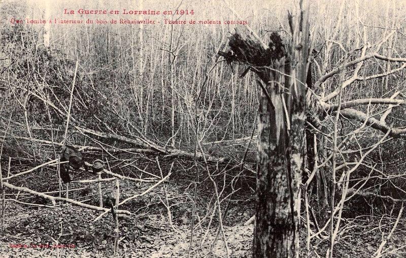 tombe dans bois Rehainviller