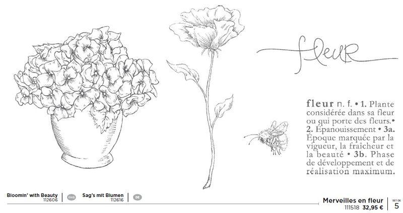 p45 merveilles en fleur