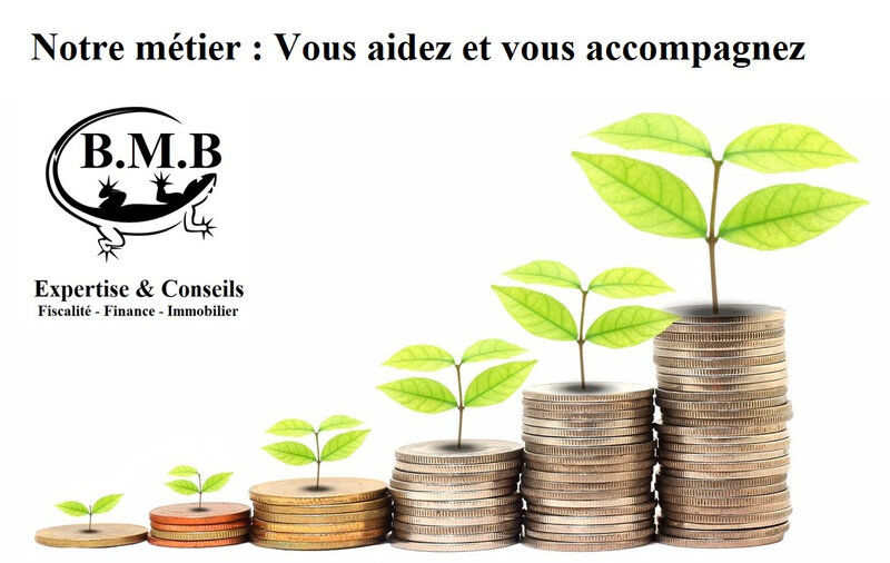 investissement-rentable by BMB