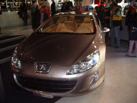 Peugeot407Elixir2