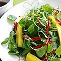 Salade de cresson à la mangue et au piment, sauce citron vert et soja