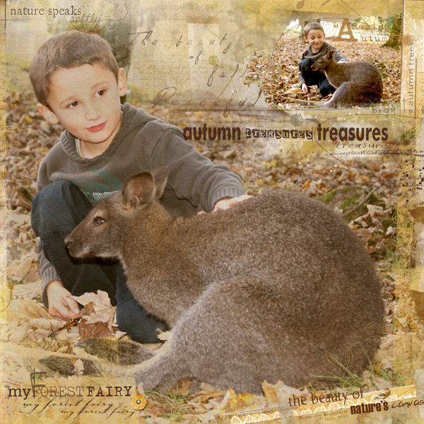 Autumn_treasures