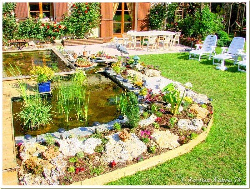 Le bassin...Mon petit coin de paradis (5)