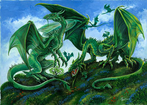 le_couple_dragons_ok