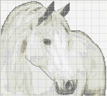 point_de_x_cheval