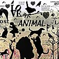 fond blog lost animal love