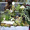 Festival des marionnettes: les vitrines dans charleville (2)
