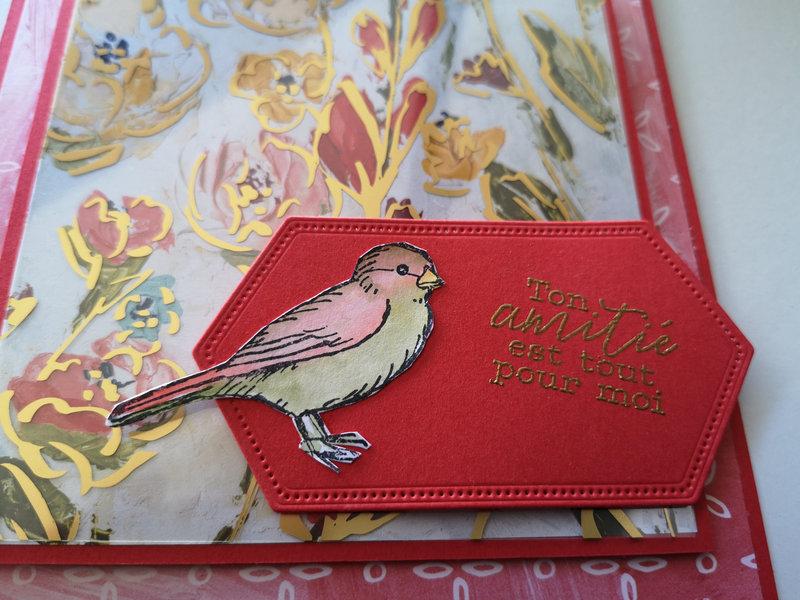 20n Carte libre comme l'oiseau