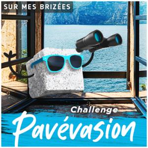 logo-challenge-pavevasion