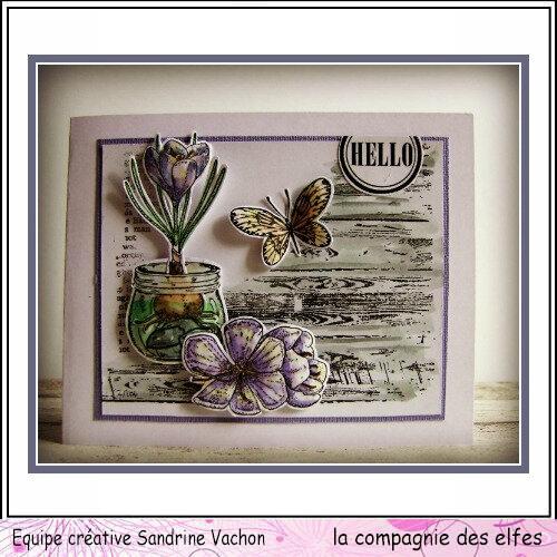 Sandrine VACHON dt LCDE mai (1)