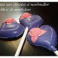 Sucettes aux chocolats et marshmallow