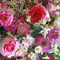 Petit intermède floral...