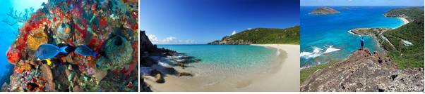 stbarth17-4