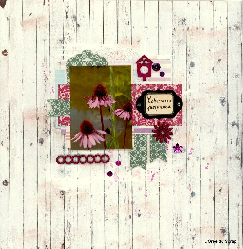 scrap nature blogorel loreeduscrap